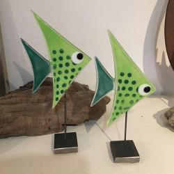 lysegrøn glasfisk